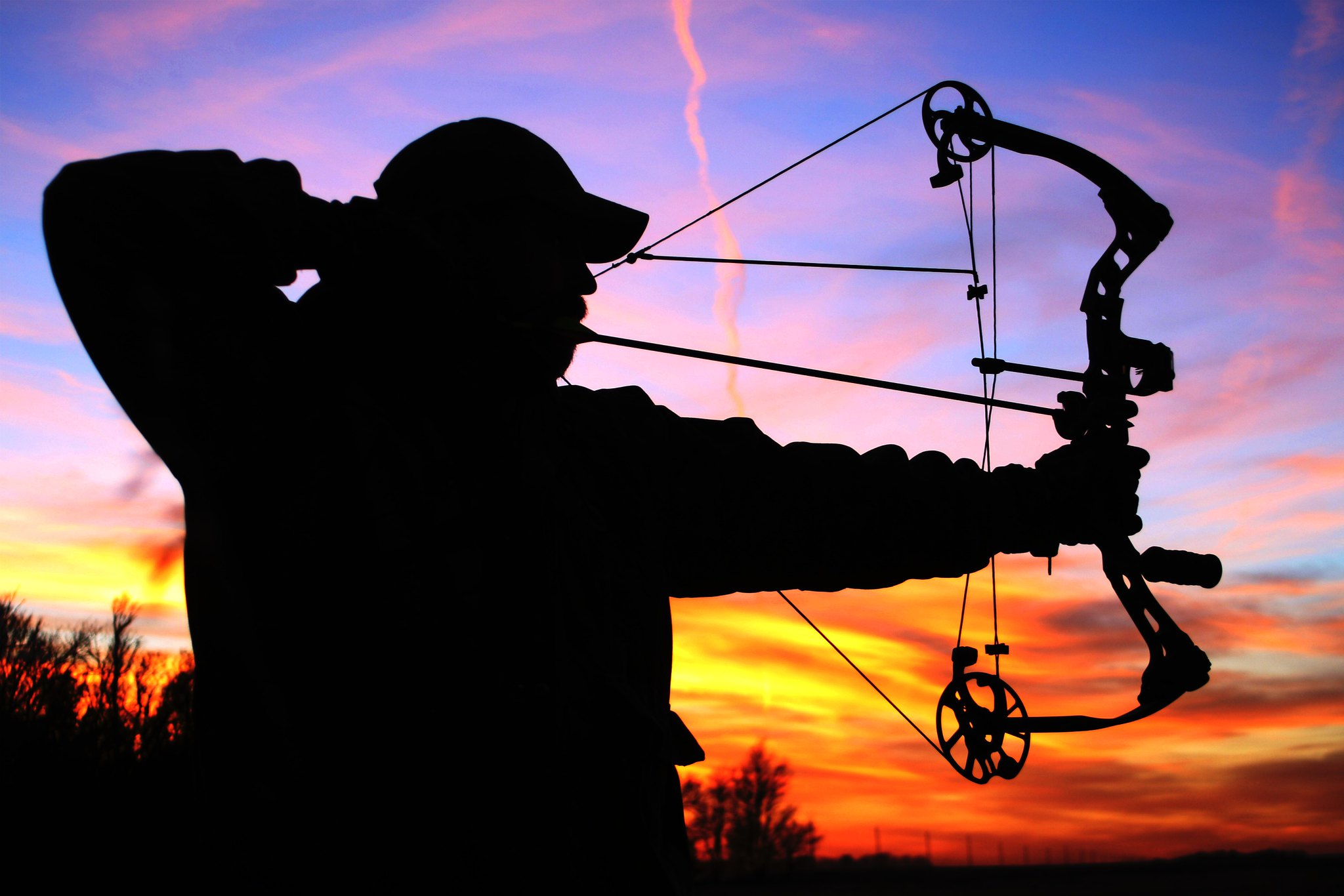 compound bow hunting silhouette